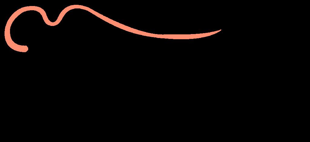 Hospiz Logo